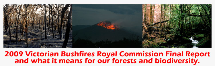 Environment East Gippsland Fires RC Update