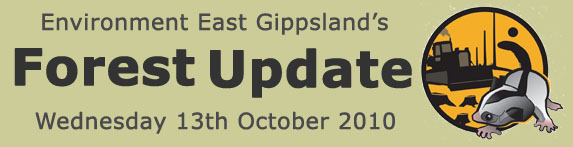 Environment East Gippsland Forest Update