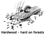 Hardwood-hard-on-forests