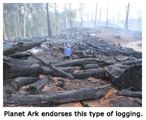 Planet-Ark-endorses-this-type-of-logging