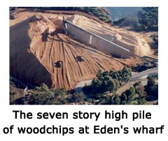 The seven story high pile of woodchips at Eden's wharf